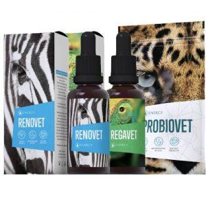 Regavet Renovet Probiovet - Energy Příbram